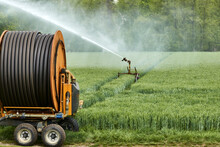 Irrigation Reel With Moving Sprinkler For Cultivating A Field