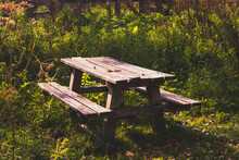 Bench And Table In The Forest, Rural Area