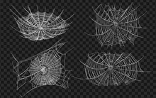 Halloween Monochrome Spider Web And Spiders Isolated On Black Background. Hector Venom Cobweb Set. Vector Illustration
