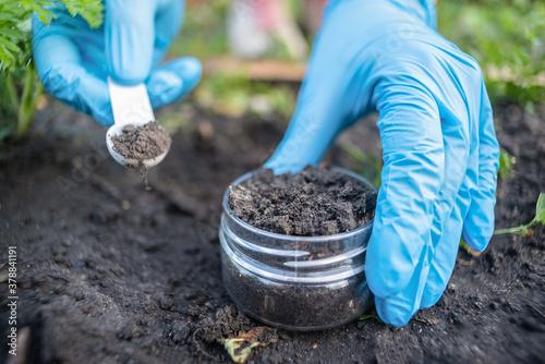 A soil science concept Canvas