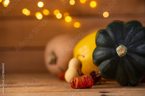 Obraz na plátně The autumn's harvest isolated on wooden background