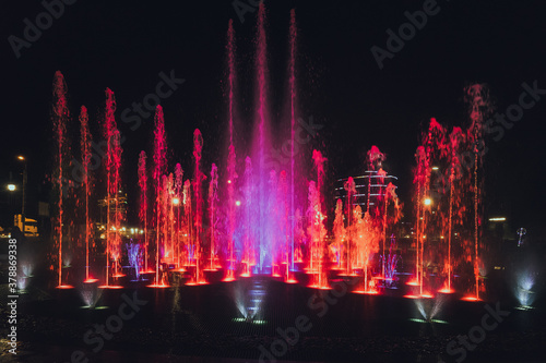 fountain at night Canvas