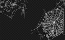 Halloween Monochrome Spider We...