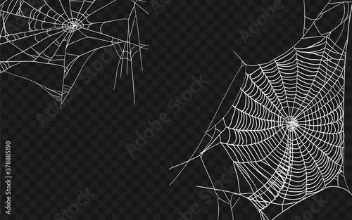 Obraz Halloween monochrome spider web. Set of different spiderwebs isolated on black, easy to print. Halloween set with web. Vector Illustration. - fototapety do salonu