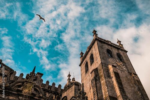 Fotomural Cattedrale di Porto Oporto con cielo nuvoloso e gabbiano.