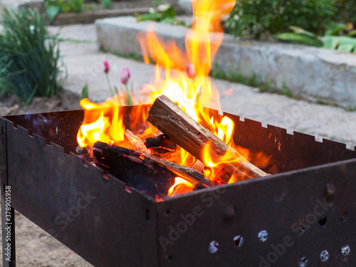 Red flame from a cut of a tree, dark gray coals inside a metal brazier Canvas Print