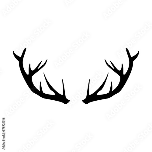 Fotografia deer antler vector icon