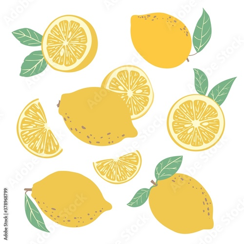 Fotografie, Obraz Fruit collection with fresh lemons and slices
