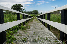 Bridge In The Fields