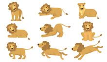 Cartoon Lion Actions Set
