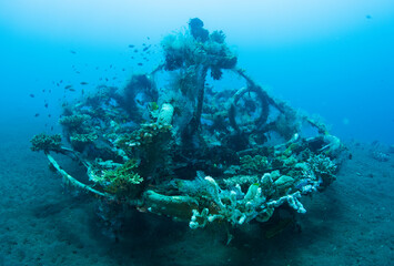 Artificial reef - underwater world of Tulamben, Bali, Indonesia.
