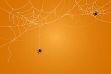 Spider And Cobweb Background. ...