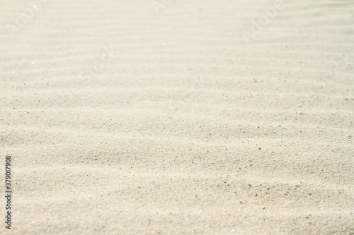 Fototapeta Rippled sand on the sea coast formed by wind and water, background, texture, pattern obraz