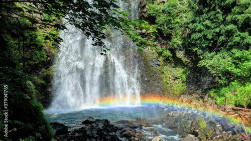 Fototapeta 善五郎の滝にかかる虹