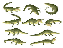Set Of Green Crocodile Charact...