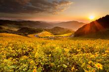 Landscape Of Bueatiful Sunset ...