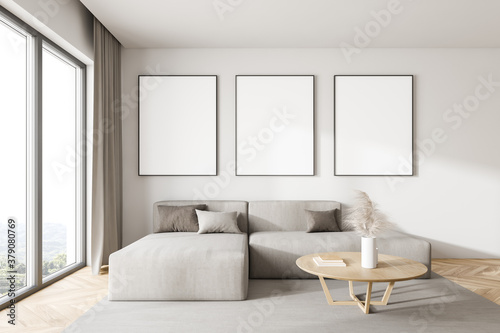 White living room with sofa and posters