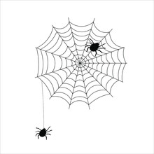 Black Spider With Web Icon For...