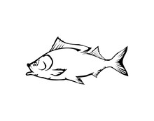 Fish Icon Vector Isolated .  The Fish Is Breathing, While Bubbles Are Coming Out Of Its Mouth