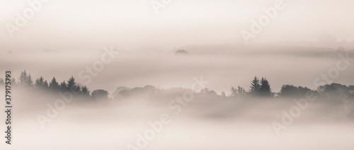 Fototapeta Fog, Lochwinnoch,  Renfrewshire, Scotland , UK   .
