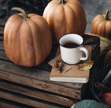 Fall Styled Composition. Autumn Breakfast Still Life. Scandinavian Hygge Concept. Morning Concept. Cozy Autumn Scene With Pumpkins And Apples. Flat Lay. Home Decor. Thanksgiving And Halloween Concept.