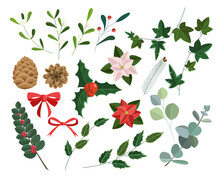 Christmas Vector Plants, Holly Berry, Pine, Rowan, Leaves Branches, Holiday Decoration, Winter Symbols Isolated On White Background. Vintage Nature Illustration. Vector Illustration.