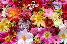 Garden Flowers And Berries, Da...