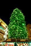 Fototapeta Wieża Eiffla - Christmas tree in Innsbruck, Austria