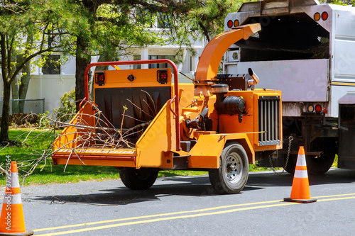 Fototapeta Wood chipper blowing tree branches cut A tree chipper or wood chipper is a portable machine used for reducing wood into smaller wood chips. Storm damage tree after a storm obraz