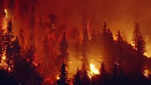 Wildfire Season, Drone Shot Of...