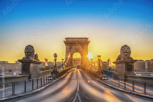 Fototapeta Budapest Hungary, city skyline sunrise at Chain Bridge with famous lion statue obraz