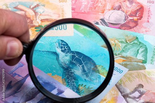 Maldivian money in a magnifying glass a business background Billede på lærred