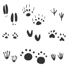 Animal Footprints Vector Set I...