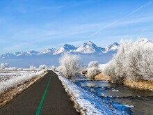 Winter Landscape Of Bike Path ...