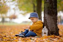 Beautiful Fashion Toddler Boy,...