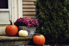 Red And White Pumpkins And Chr...