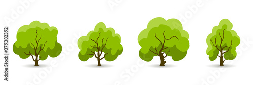 Fototapeta Collection of trees. tree set isolated on white background. vector illustration. obraz