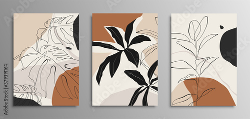 Fototapeta Set of posters with elements of tropical leaves and abstract shapes in terracotta colors. obraz