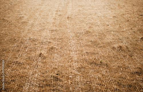 Fotografia Erosion control blanket, soil net