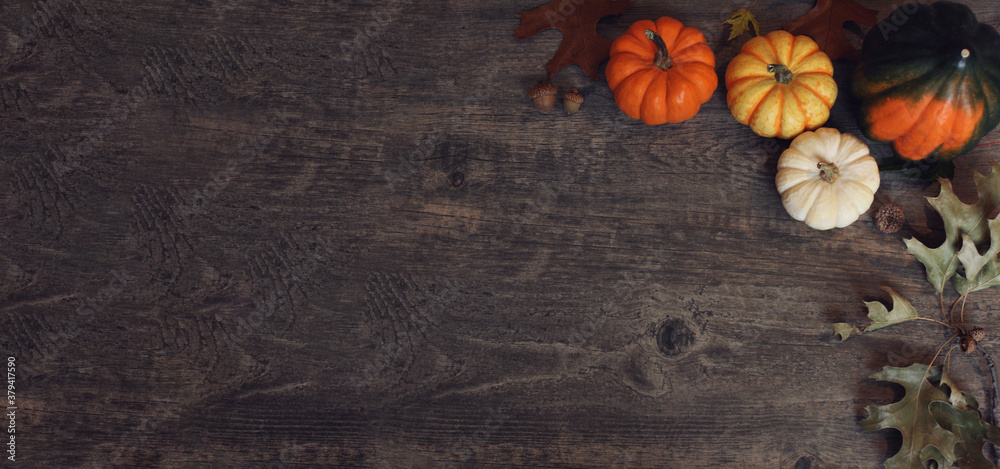 Fototapeta Fall Thanksgiving and Halloween pumpkins, leaves, acorn squash over rustic dark wood table background shot from directly above, horizontal with copy space