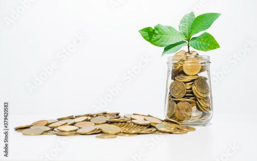 Fotografiet business financial planning concept