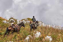 Rider Climbs A Mountain While Leading Two More Horses In Adygea, Russia