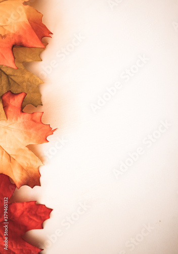 Top view of dried maple leaves on a white surface with copy space Fototapet