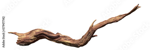 driftwood isolated on white background, old wood Fotobehang