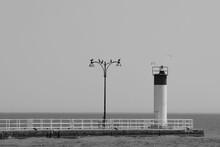 Lighthouse On The Pier - Black...