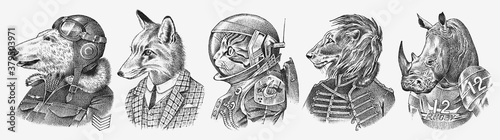 Fototapeta Fox and Rhino dressed up in Suit. Cat astronaut or Spaceman. Lion and Polar bear. Fashion Animal characters set. Hand drawn sketch. Vector engraved illustration for label, logo and T-shirts or tattoo. obraz