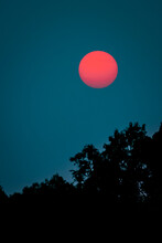Summer View Of Deep Red Colored Sun, As Viewed Through Smoky Skies During The Wildfires Of 2020