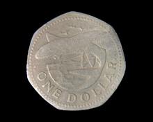 Close Up On A One Dollar Coin ...