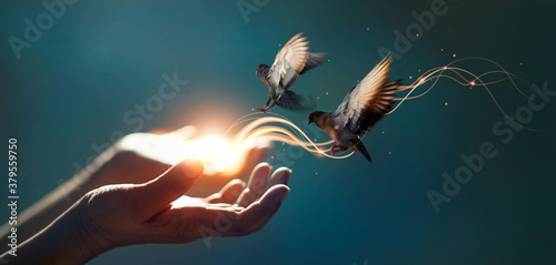 Power of hope and faith, Abstract, Woman praying and free bird enjoying nature on magical background, Religion concept Fototapet