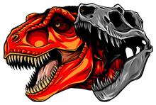 Tyrannosaurus Rex Skull Fossil...
